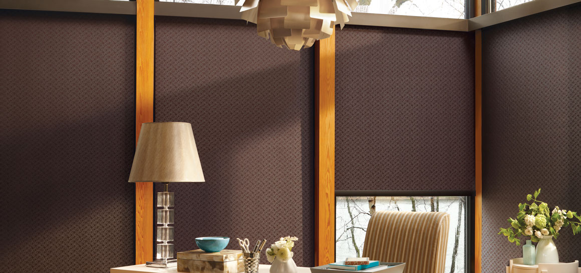 Hunter Douglas Brown Roller Shade