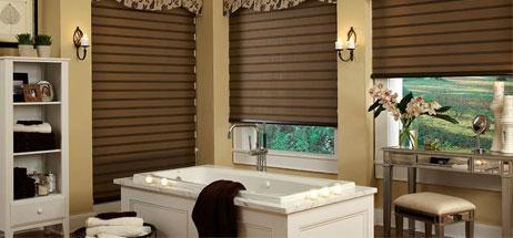 design bathroom ideas for transitional shades